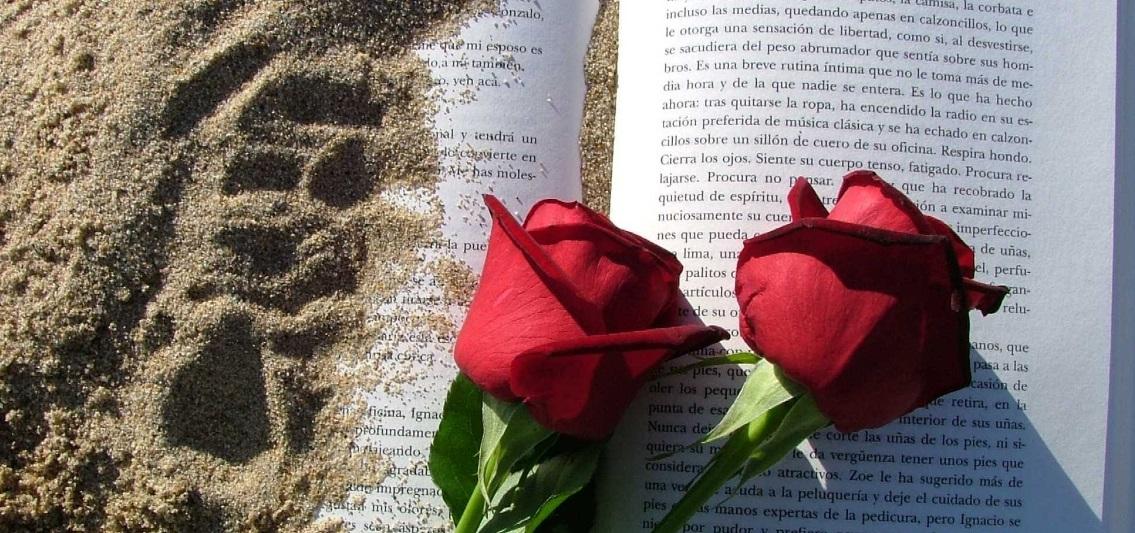 Entre rosas y libros pasamos el 23 de abril