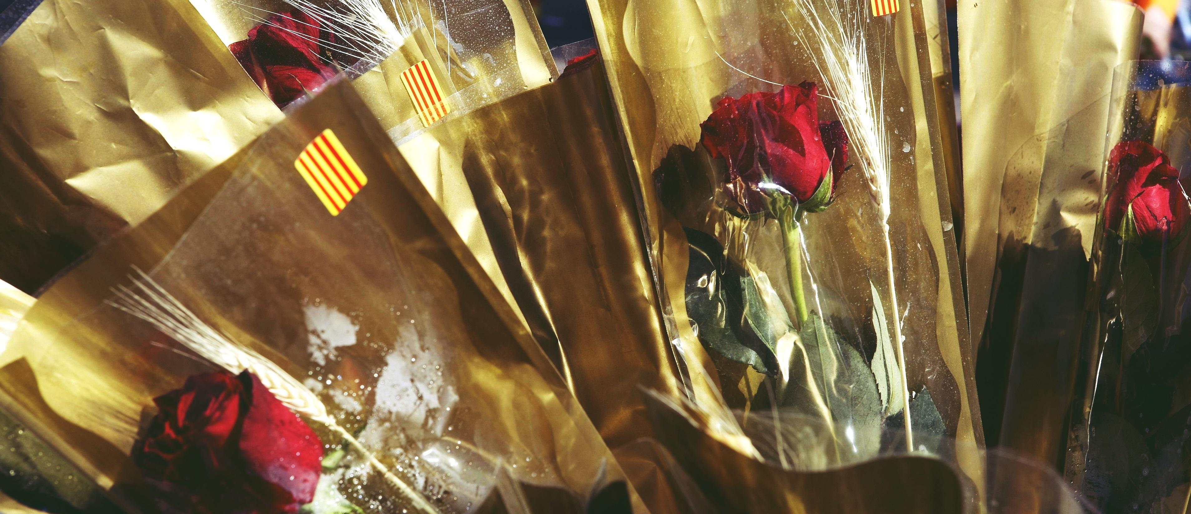 ¿Por qué es tan especial Sant Jordi? Conoce la leyenda que dio pie al día del libro