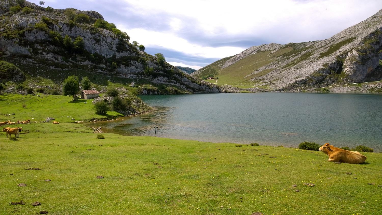 Lago Enol, Lagos de Covadonga en Asturias