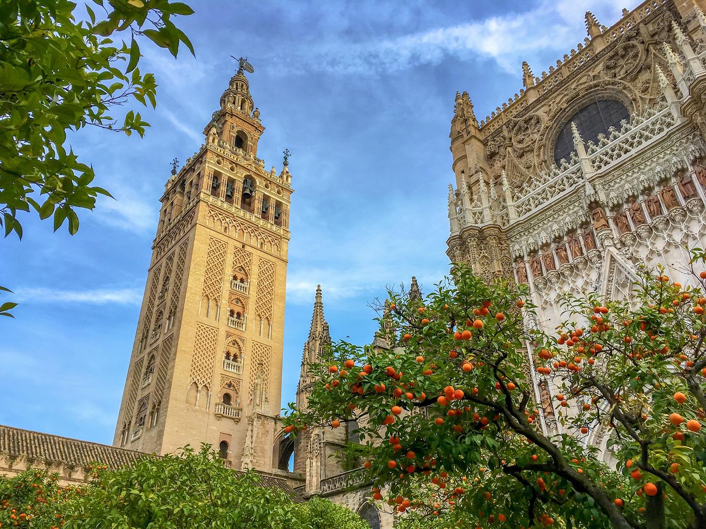 La Giralda y la Catedral de Sevilla rodeada de naranjos