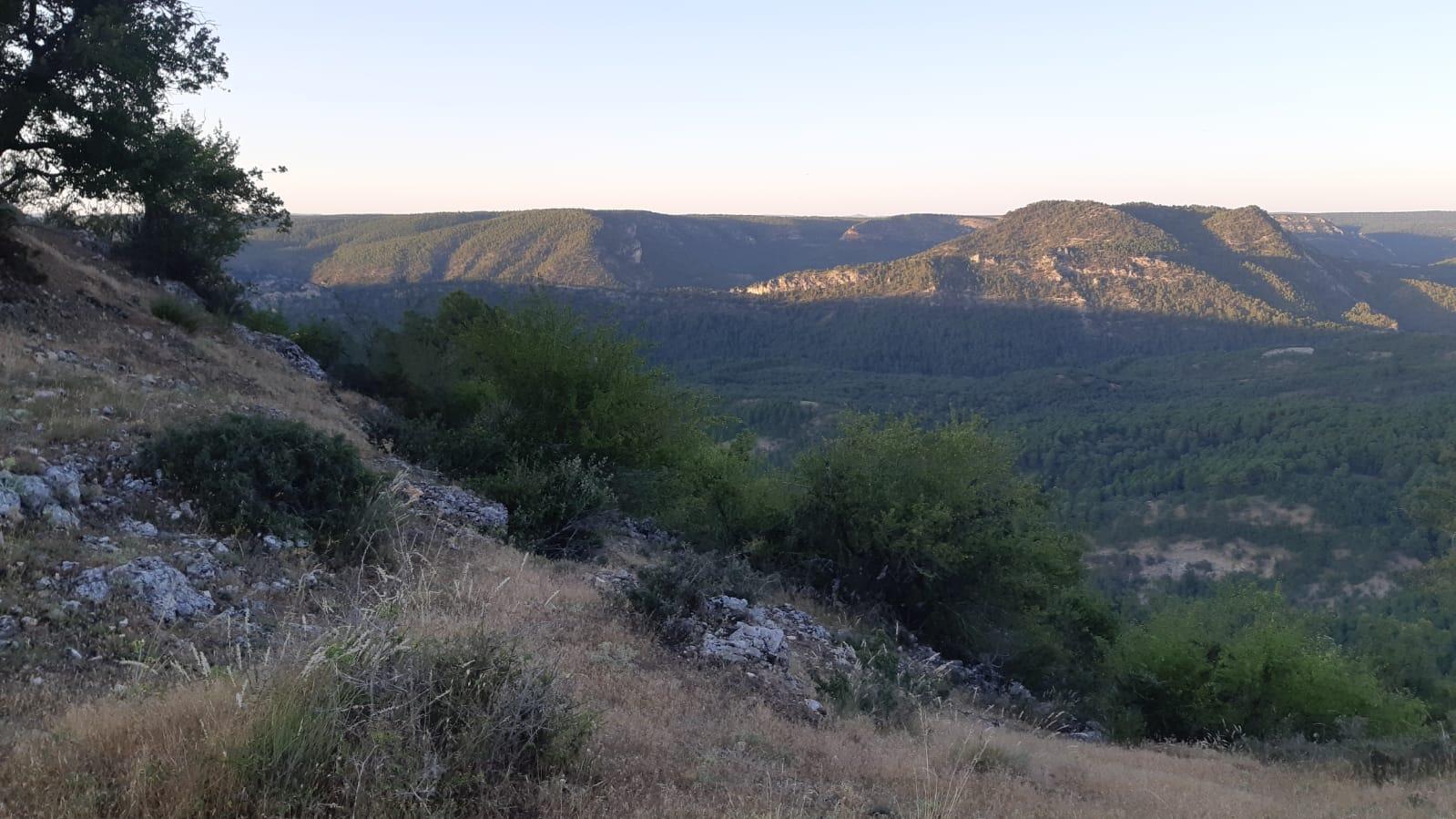 Desde lo alto de Peñalén es el mejor lugar donde dirigirse por la noche y avistar las estrellas