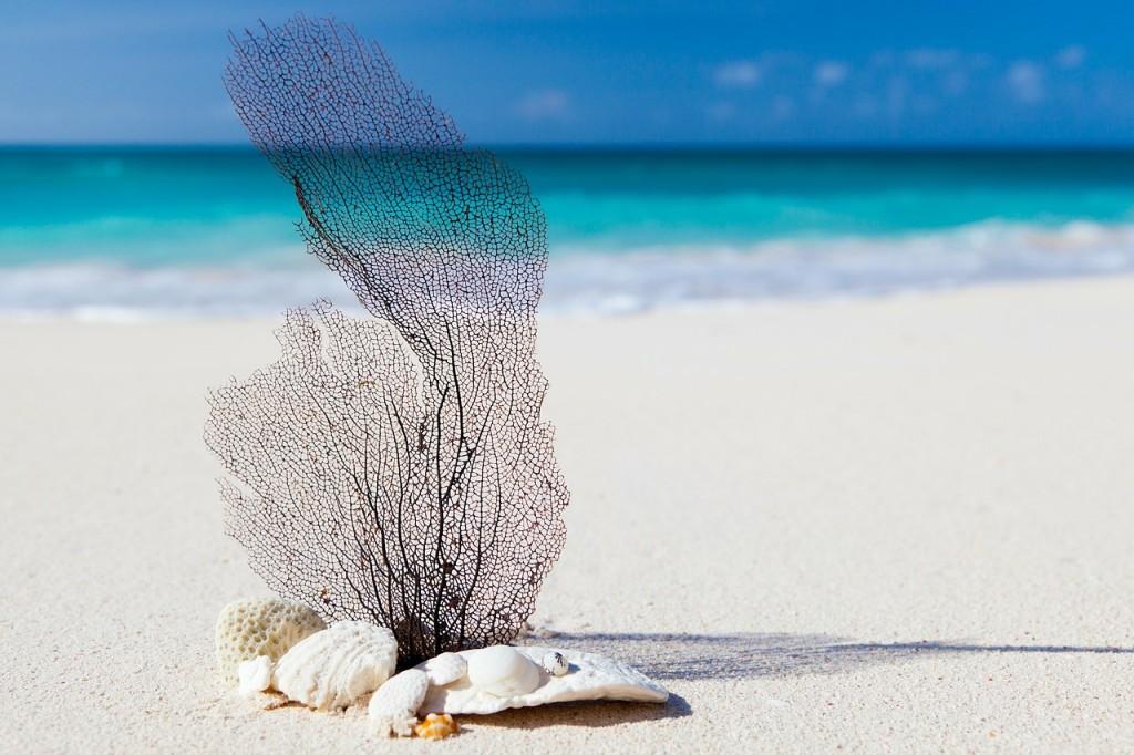 playa_caribe_sol