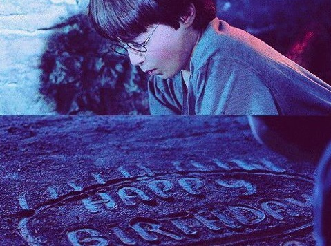 Cumpleaños Harry Potter