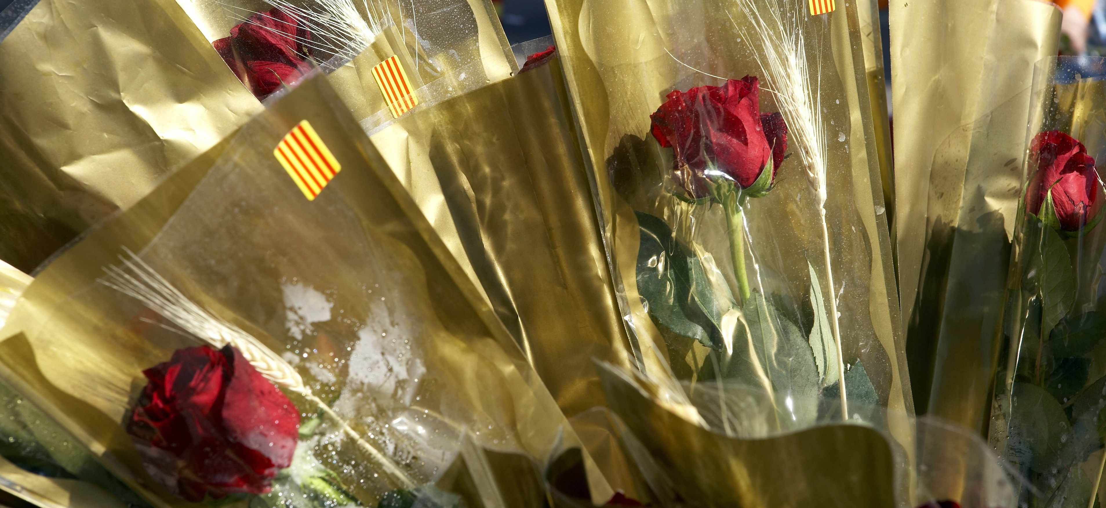 7174631 - detail of a bouquet of roses, the day of the book, sant jordi, barcelona, spain