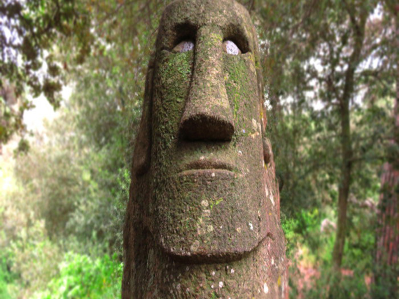 Bosque de Orrius